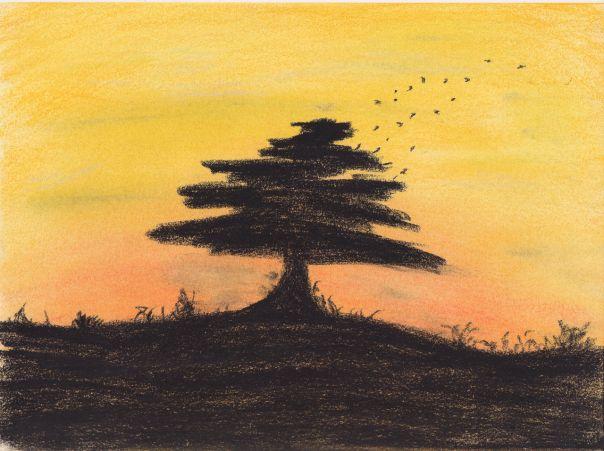 treesunset